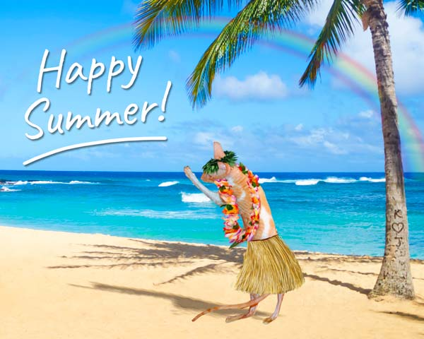 Frasier is enjoying the summer